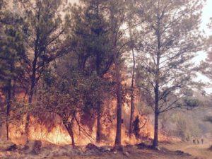 Incendio(2)