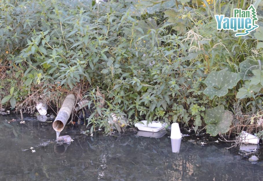 Influencia de la población de Jarabacoa en el aumento de los niveles de Echerichia coli en Arroyo Yerba Buena.